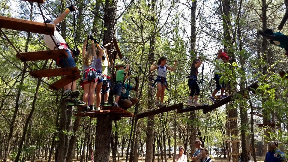 TreeTop Adventures  Team Building